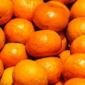 Bunch Of Fresh Tangerines Oranges On Market. Tangerines  Fruit Background. Food Background.