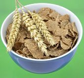 Bowl of breakfast bran flakes