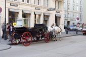 City Tour Vienna