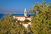 image of kali  - Dalmatian style town of Kali in the olive trees Island of Ugljan Croatia - JPG