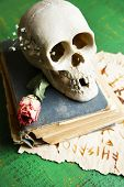 Skull on old book  on color wooden background