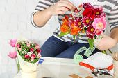 pic of compose  - Female hands composing beautiful bouquet - JPG