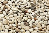 Pebble close-up