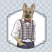 Fashion Illustration Of Dog