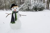 Happy snowman standing in the park wearing a hat