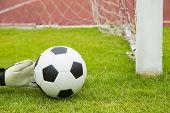 Soccer Goalkeeper Hands Save Goal