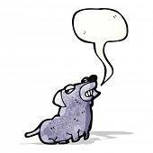 smug little dog cartoon