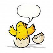 cartoon hatching chick