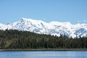 Alaska's Forests and Mountains