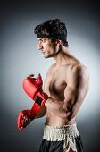 Muscular boxer with red gloves