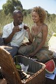 African couple toasting at picnic