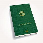 green leather biometric passport with globe icon