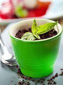 Granny Dessert Bowl with Sponge Cake, Raspberries and Basil Cream Inside. Garnished with Basil Leaf