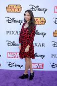 LOS ANGELES - OCT 1:  Rowan Blanchard at the VIP Disney Halloween Event at Disney Consumer Product Pop Up Store on October 1, 2014 in Glendale, CA