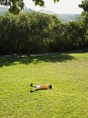 Asian boy laying in grass