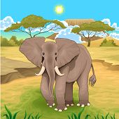 African landscape with elephant. Vector  illustration.