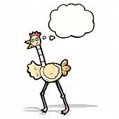 cartoon ostrich