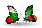 Two Butterflies With Flags On Wings As Symbol Of Relations Bulgaria And Zambia