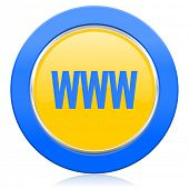 www blue yellow icon