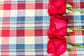 Red Rose With Plaid Fabric Background