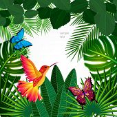stock photo of colibri  - Tropical leaves with birds - JPG
