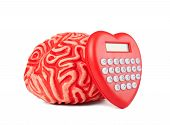 Human Rubber Brain With Calculator Heart Shaped