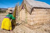 Unrecognizable Woman In National Costume Indian Uros Knits A Sheaf. Uros - Floating Islands, Titicac