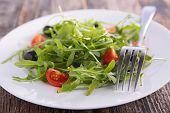 salad with tomato and arugula
