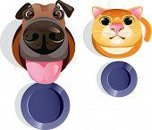 Cat, dog, food bowls