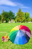 Rainbow Umbrella And Picnic Basket
