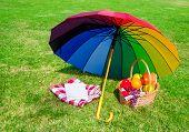 Rainbow Umbrella, Book And Picnic Basket