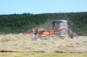 Agriculture Raking Hay