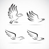 Vector Image Of An Eagles Design On White Background