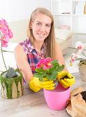 Beautiful young woman planting colorfull flower in a flowerpot at her home