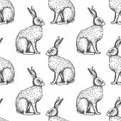 image of hare  - Seamless vintage pattern with ink hand drawn hare illustrations - JPG