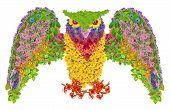 Floral Owl