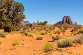picture of butt  - Monument Valley West and East Mittens Butte Utah National Park - JPG