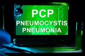 Computer with words Pneumocystis pneumonia (PCP).