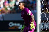 CARSON, CA. - FEB 2 : United States goalkeeper Nick Rimando during the USA friendly against Panama on February 2nd 2015 at the StubHub Center in Carson, California.
