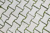 Green Grass Grows Through Modern Gray Cobblestone