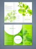 Professional business trifold flyer template, corporate brochure or cover design, can be use for publishing, print and presentation.