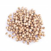 Coriander Seeds Isolated On A White Background