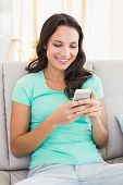 Pretty brunette texting on the phone at home in the living room