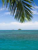 image of jungle exotic  - Jungle and Sea Exotic Paradise  - JPG