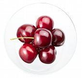 stock photo of black-cherry  - Black cherry in vase isolated on white - JPG
