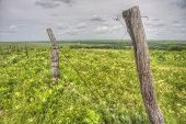 picture of tallgrass  - old wooden fence on hilltop, Flint Hills, Tallgrass Prairie National Preserve, Kansas