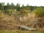 image of bohemia  - view autumn landscape southern Bohemia Czech Republic  - JPG