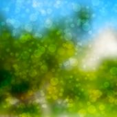 image of debonair  - Colorful of soft and blurred bokeh background - JPG