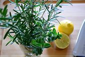 foto of oregano  - rosemary and oregano in a glass and sliced lemons on a cutting board with a knife - JPG