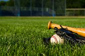 picture of baseball bat  - a baseball - JPG